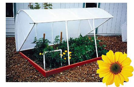 Picture of Solexx Deluxe Cold Frame