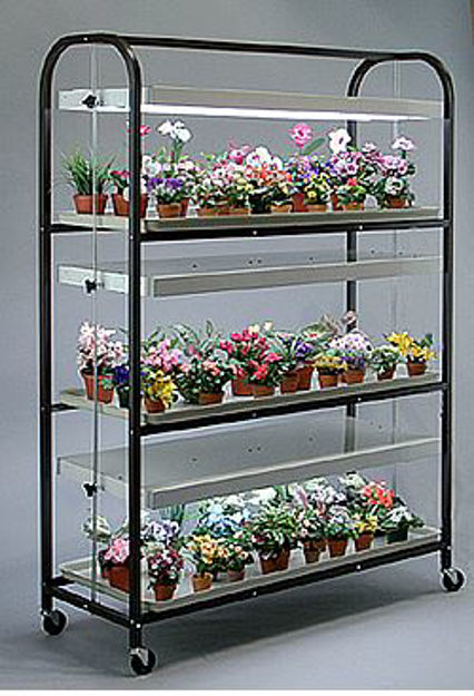 Picture of Full Size Brown Lite Cart 3 Shelf - 3 Tray with 3 - 4 lamp fixtures