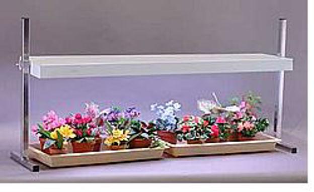 Picture of Table Top Fixture w/ 2 - 40 Watt Wide Spectrum Lamps