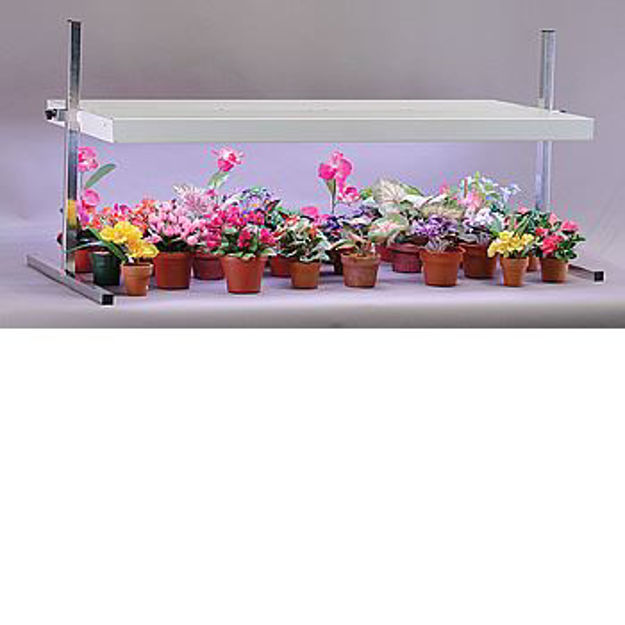 Picture of Table Top Fixture w/ 4 - 40 Watt Wide Spectrum Lamps