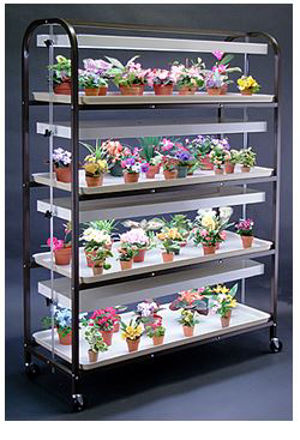 Picture of Full Size Brown Lite Cart 4 Shelf - 4 Tray with 4 - 2 lamp fixtures