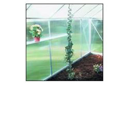 Picture of Juliana Plant Spirals - 3 pack