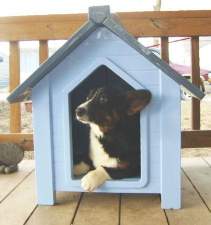 Picture of NewAgePet Small Bunk House - Large Door