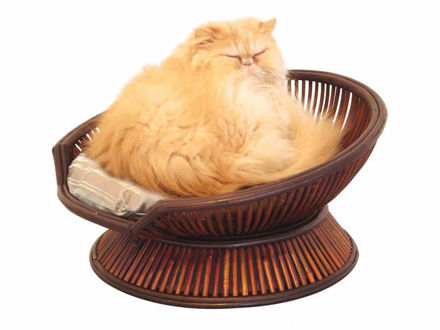 Picture of The Atmosphere Cat Bed
