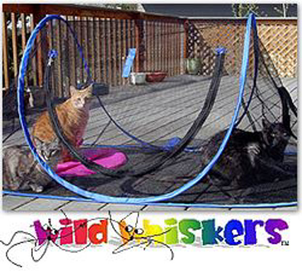 Picture of Wild Whiskers Feline Funhouse