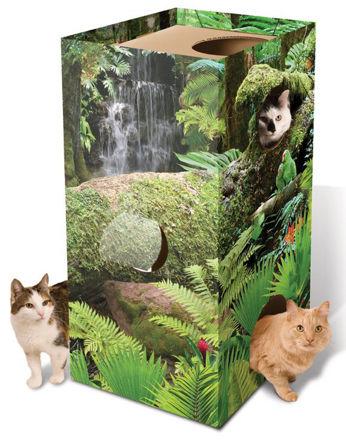 Picture of Cat Jungle