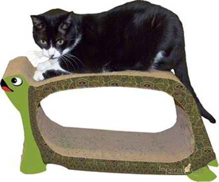 Picture of Scratch N Shapes Turtle Scratcher