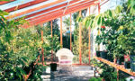 Picture of Sonoma 9'W x 12'L Redwood Lean-To Greenhouse