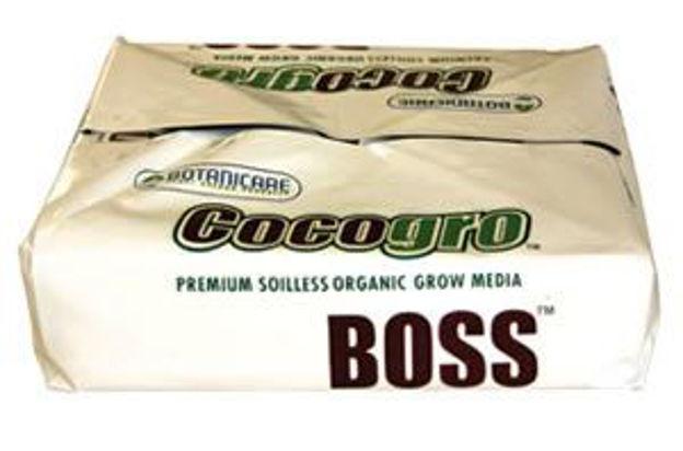 "Picture of Boss 8"" Multi-Drain"