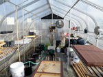 Picture of Sunglo 1200D Greenhouse