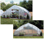 Picture of 26x12x72 Solar Star Gothic Greenhouse with Polycarbonate Ends and...