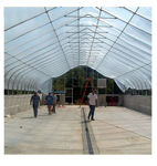 Picture of 30x12x36 Solar Star Gothic Greenhouse with Polycarbonate Top and...
